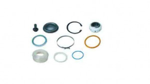 BALL JOINT REP. KIT. ASP.DF.2101061 1398368