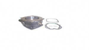 CYLINDER HEAD WITH PLATE KIT ASP.MB.3101655 000 130 4119 WABCO:411 033 806 2