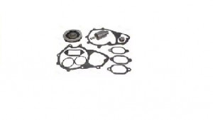 MAN WATER PUMP REP.KIT ASP.MN.4100894 51 06599 6033